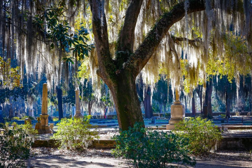 Selma, AL cemetery