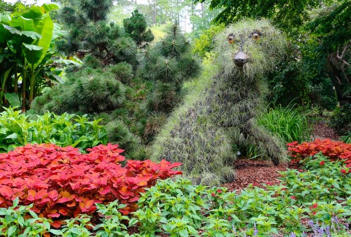 Topiary Fido